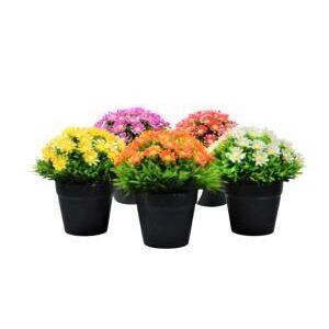 Aranjament floral in ghiveci negru 15 cm