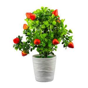 Floare artificiala 30 cm capsuna